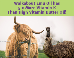 "A hairy cow looking over a fence at an Emu with the words ""Walkabout Emu Oil has 5 x more Vitamin K Than high Vitamin Butter Oil!""."