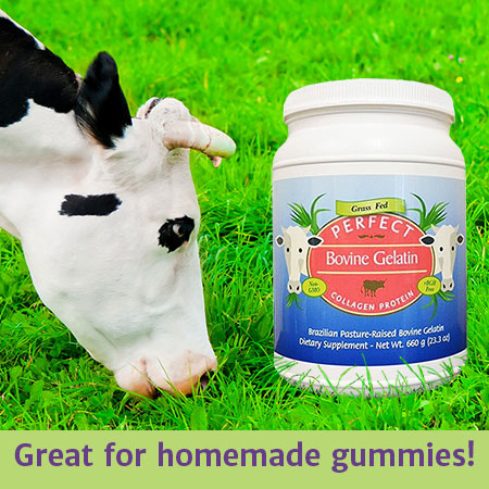 Picture of a bottle of Perfect Bovine Gelatin from grass fed cows in a field with a cow.